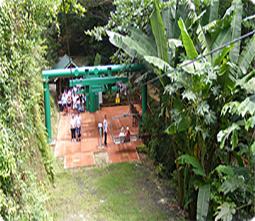 Jamaica Tours Limited Ocho Rios